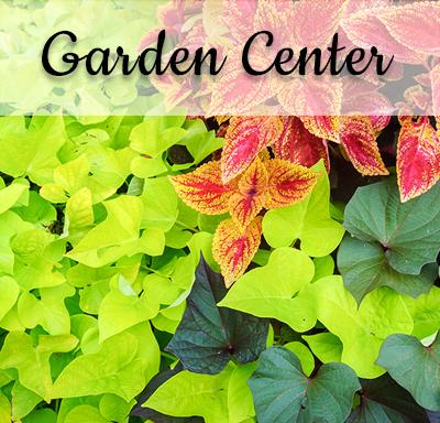Garden Center - Bauman Farm & Garden