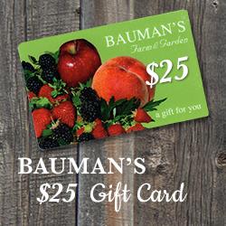 $25 Bauman Gift Card