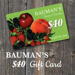 $40 Bauman Gift Card