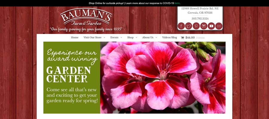 Bauman's New Website