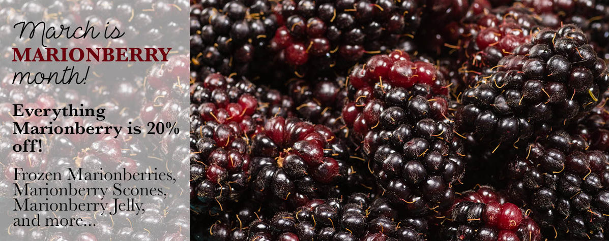Marionberry Month
