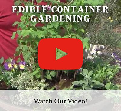 Edible Gardening Video