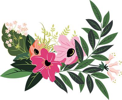 Color Bouquet - Monrovia