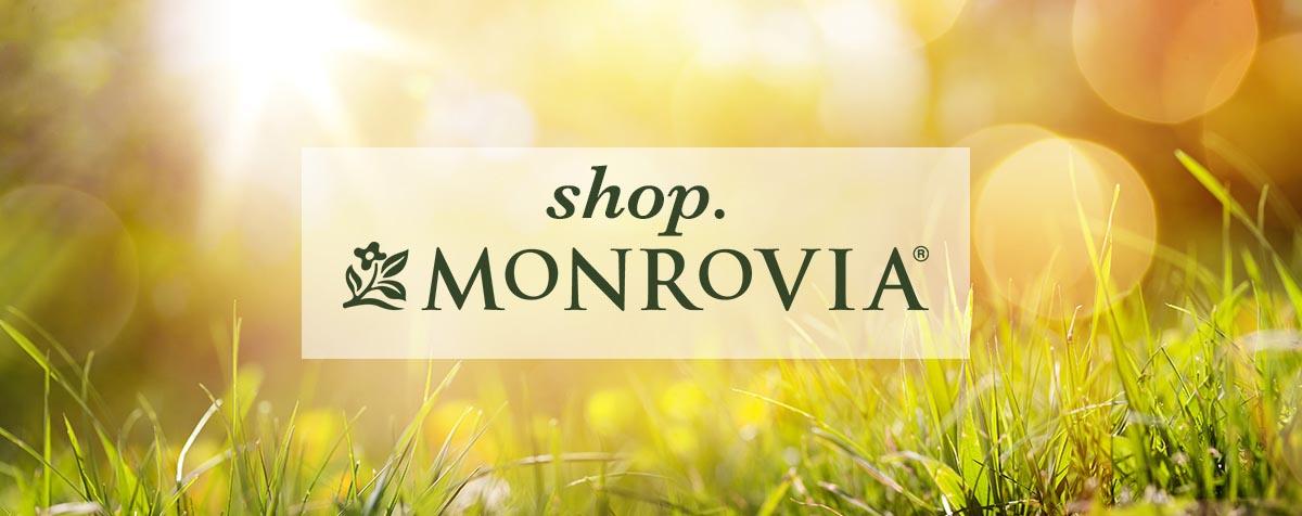 Shop Monrovia Online