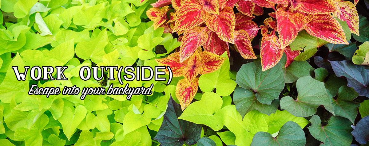 Garden Slider - Plants