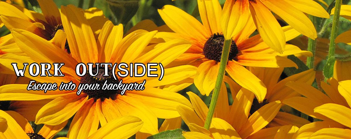 Garden Center & Nursery - Beautiful Flowers