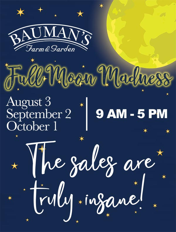 Full Moon Madness Sale