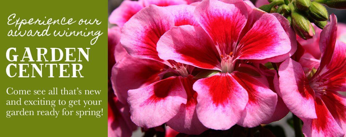 Garden Center - Flowers