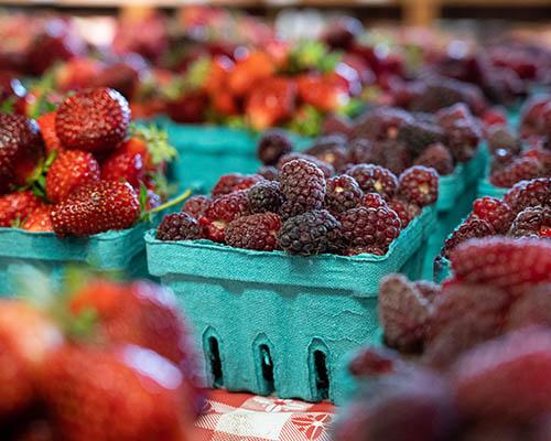 Mixed Berries & Loganberries